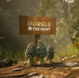 Morels: The Hunt (2019) PC | Лицензия