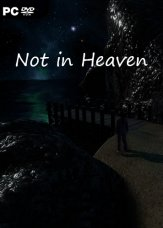 Not in Heaven (2019) PC | Лицензия