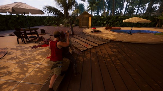 Deadly Tropics (2018) PC | Лицензия