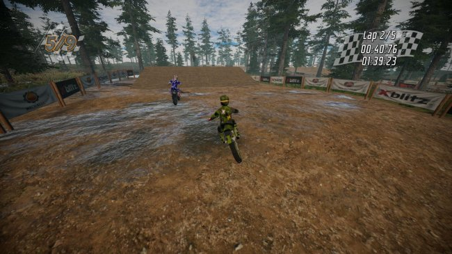 Dirt Bike Insanity (2018) PC | Лицензия